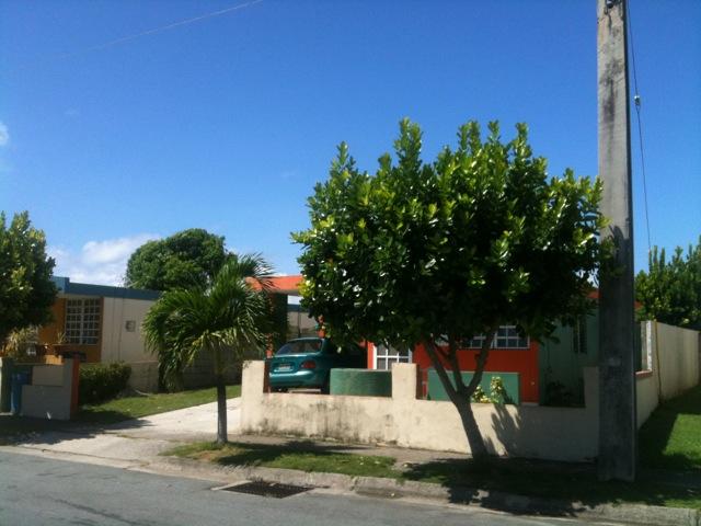 arroyo-del-amar3.jpg